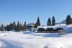 zima3